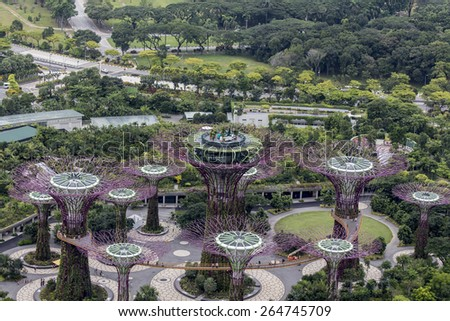 Garden By The Bay August 2014 super trees grove gardensbay stock photo 307329095 - shutterstock