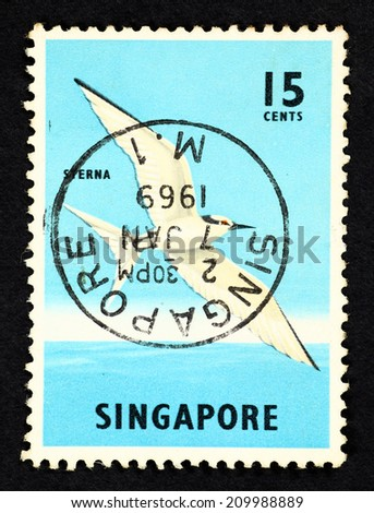 SINGAPORE - CIRCA 1968: Blue color postage stamp printed in Singapore with image of a Sterna bird. - stock photo