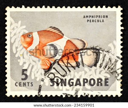 SINGAPORE - CIRCA 1962: Postage stamp printed in Singapore with image of a Amphiprion Percula fish, also known as Orange Clownfish. - stock photo