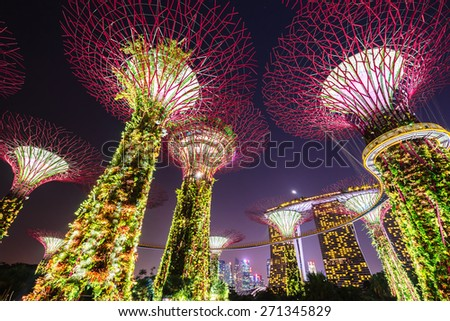 SINGAPORE - February 22 2015: Night view of The Supertree Grove at Gardens near Marina Bay. Gardens by Bay was crowned World Building of Year at World Architecture Festival 2012 - stock photo
