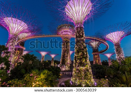 singapore february 28 2015 sunset scene of the supertree groove at garden by
