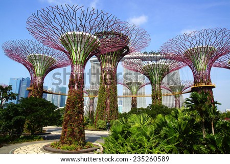 SINGAPORE - FEBRUARY 04, 2014: The Supertree Grove at Gardens by the Bay. These unique Supertrees are tall?? up to 16 stores in height, created by UK landscape architects Grant Associates.  - stock photo