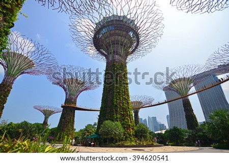 SINGAPORE - JULY 3, 2015: Supertree Grooves over the blue sky. Supertree Grooves  located in Garden by the Bay, Singapore. - stock photo