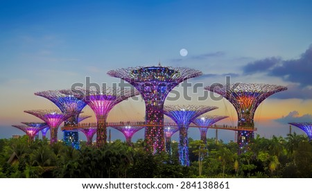 SINGAPORE-JUN 1: Evening view of The Supertree Grove at Gardens by the Bay on Jun 1, 2015 in Singapore. Spanning 101 hectares of reclaimed land in central Singapore. - stock photo