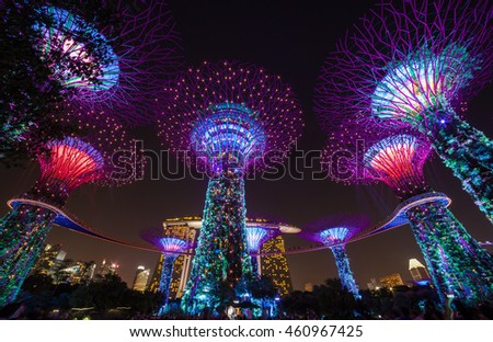 SINGAPORE - JUNE 7, 2016 Night View of The Supertree at Gardens by the Bay sands on 7 June 2016