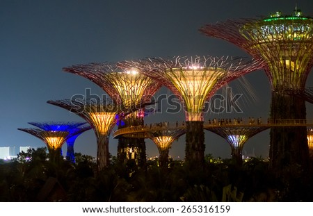 SINGAPORE - JUNE 20, 2014: Supertree Grove in the Graden by the Bay in Singapore.