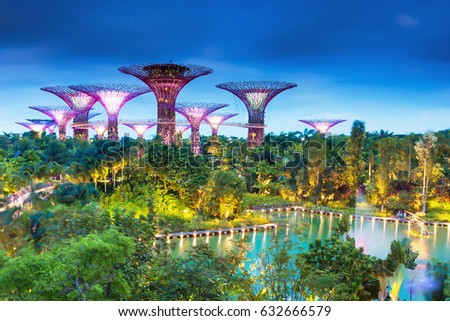 singapore march 3 2017 supertrees at gardens by the bay the tree