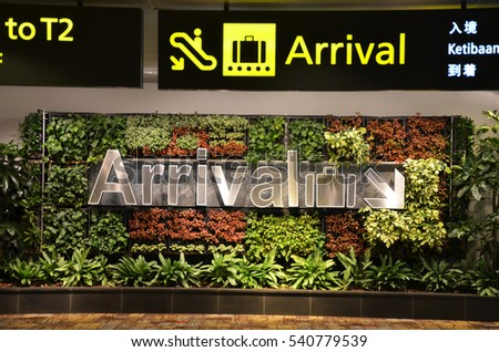 SINGAPORE - 18 NOV, 2016: Singapore Changi Airport (SIN) is one of the best airports in the world thanks to its services including fresh flowers and a butterfly garden.