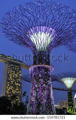 SINGAPORE - OCT 23: Night view of The Supertree Grove at Gardens by the Bay on Oct 23, 2013 in Singapore. Spanning 101 hectares, and five-minute walk from Bayfront MRT Station.  - stock photo
