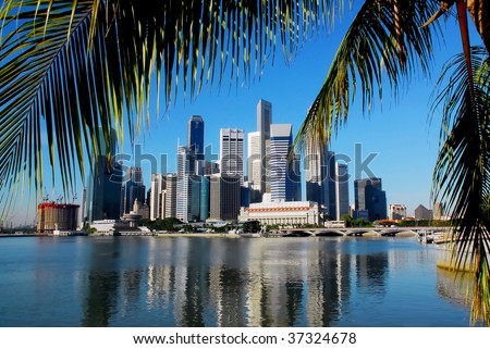 singapore skyline with palm leafs and a clear blue sky - stock photo