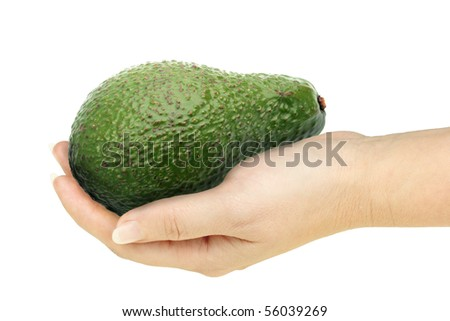 Single avocado in a hand of woman. Isolated on white background. Close-up. Studio photography.