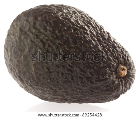 single avocado isolated on a white background
