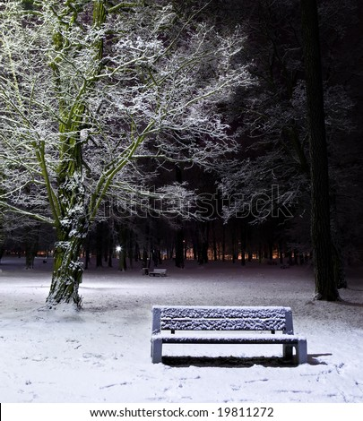 Single bench and tree covered with snow. Night shot. - stock photo