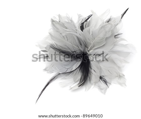 single black and white bow - stock photo