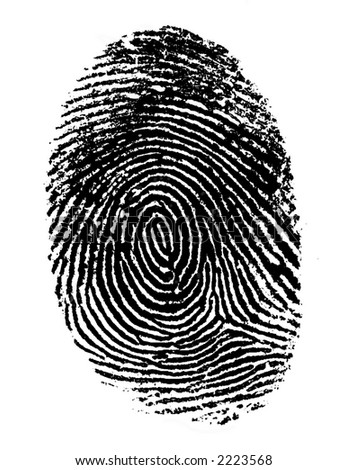 Single black fingerprint - stock photo