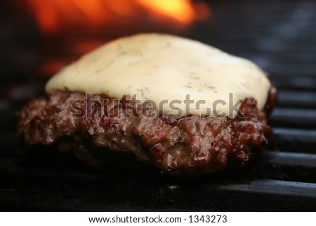 Single cheeseburger, shallow DOF - stock photo
