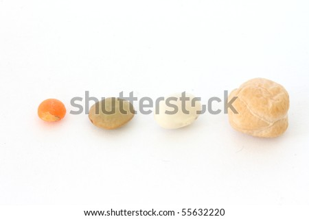 Single chickpea (indian pea) and lentil on white background close up view - stock photo