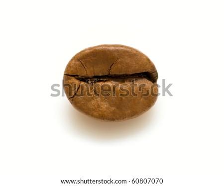 single coffee bean - stock photo