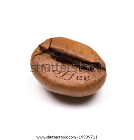 single coffee bean isolated on white background. square format.