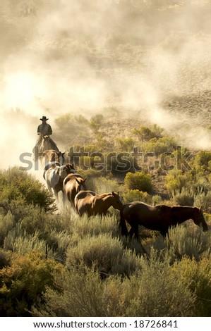 Single cowboy guiding a line of horses through the desert - stock photo