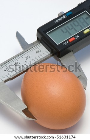 Single egg under calibration by electronic digital caliper