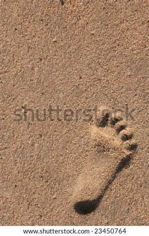 Single Footprint of a Child in the Sand at the Beach - stock photo