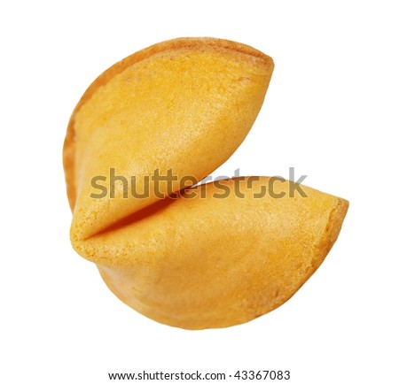 Single fortune cookie isolated on white background - stock photo