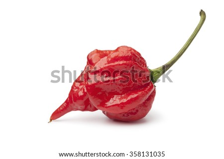Single fresh red scorpion chili pepper on white background
