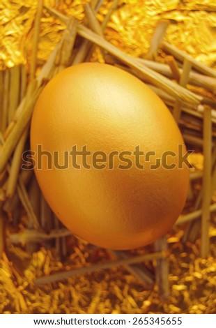 Single golden egg in a nest  - stock photo