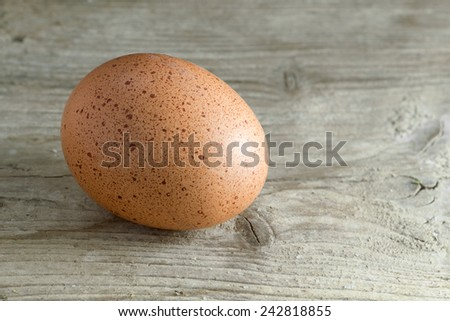 single hen's egg, brown and speckled on a rustic wooden background, copy space for text  - stock photo
