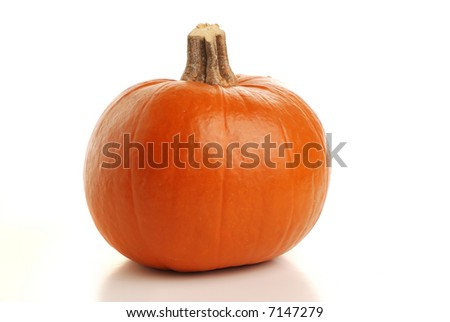 Single isolated pumpkin with shadow