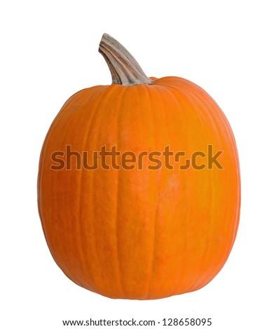 single pumpkin isolate on white - stock photo