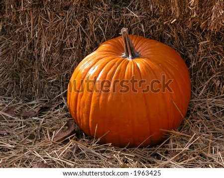 Single pumpkin sitting on bales of straw.
