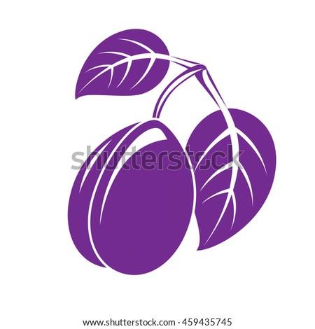 Single purple simple plum with leaves, ripe sweet fruit illustration. Healthy and organic food, harvest season symbol.  - stock photo