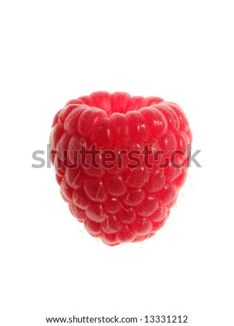 Single Raspberry on white background
