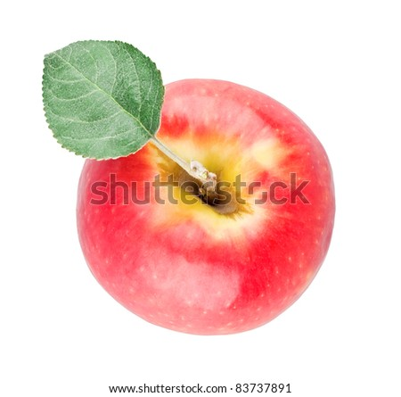 Single red apple with leaf view from top on white background