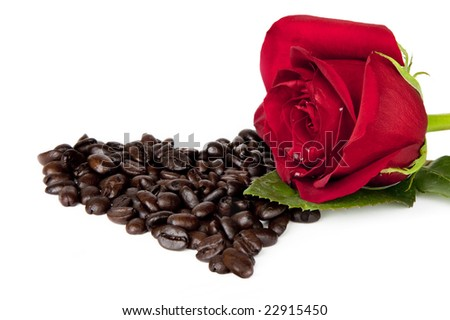 Single red rose loaded with dew drops, resting on a bed of coffee beans in the shape of a heart, isoloated on white background - stock photo