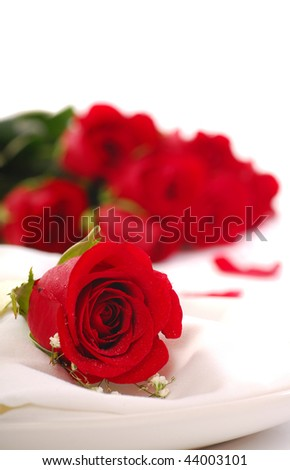 Single red rose with roses in the background showing a romantic dinner setting - stock photo