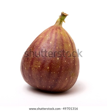 Single ripe fig from low viewpoint isolated against white background. - stock photo