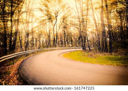 Single road in the forest with sunlight effects in background  - stock photo