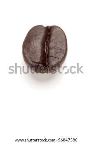Single Roasted Coffee Bean Isolated on White with Narrow Depth of Field.