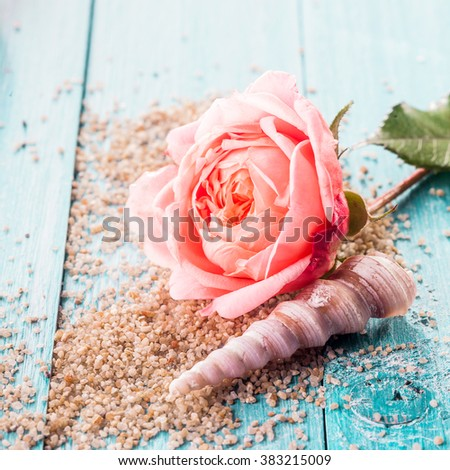 Single rose with a seashell and scattered beach sand on rustic blue wooden boards symbolic of a summer vacation romance and Valentine - stock photo
