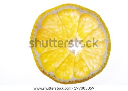 Single slice of ugli (citrus fruit), elevated view, close-up - stock photo