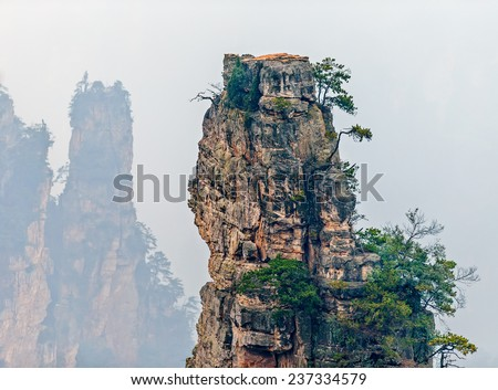 Single stone column mountain (Avatar rocks). Zhangjiajie National Forest Park was officially recognized as a UNESCO World Heritage Site - China - stock photo