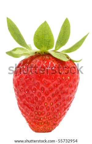Single strawberry isolated on white background - closeup view - stock photo