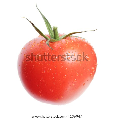 single tomato isolated on white, water drops