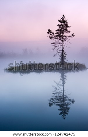 Single tree growing on a small island in bog lake at misty morning. - stock photo