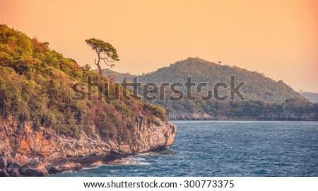 Single tree, mountain and sea (orange-blue color tone) - stock photo