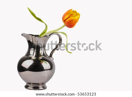 Single Tulip in Vase - stock photo