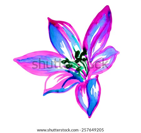single watercolor lily flower. isolated on white. aquarelle drawing. - stock photo